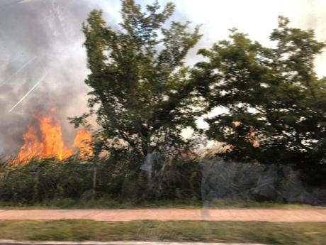 Incendio2 (34)