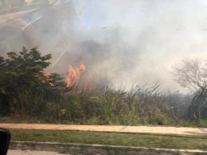 Incendio3 (28)