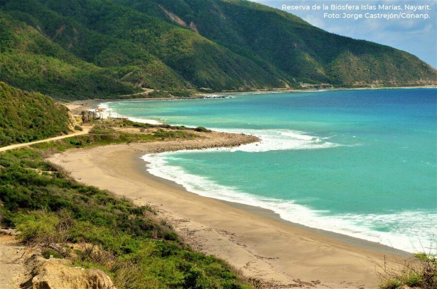Capacitan en educación ambiental a jóvenes quintanarroenses en las Islas Marías