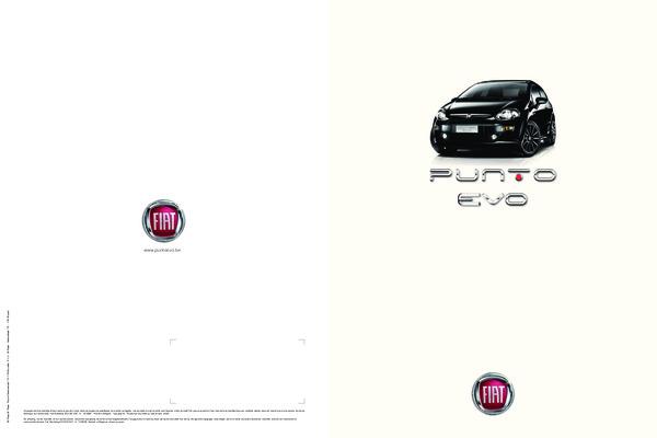 Mise A Zero Compteur Entretien Fiat Punto Evo.pdf notice