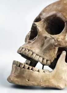 Apresan haitiano al ocuparle cráneo humano que utilizaba para ritos