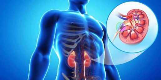 La enfermedad renal crónica está aumentando de manera preocupante