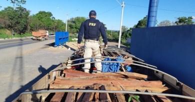 Madeira serrada que seria transportada irregularmente para Goiânia (GO) é apreendida pela PRF no oeste da Bahia