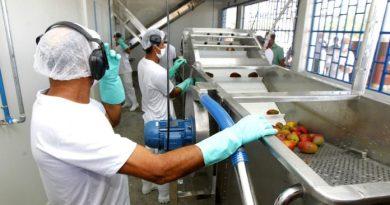 Sobradinho recebe agroindústria para processamento de duas mil toneladas de frutas por ano