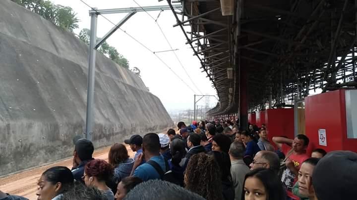 Francisco Morato Linha 7-Rubi