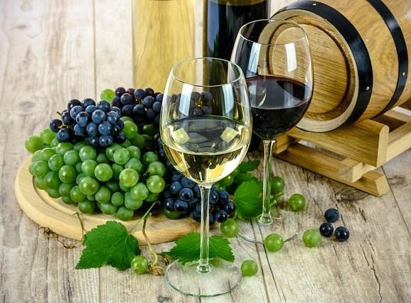 villa santa maria vinhos
