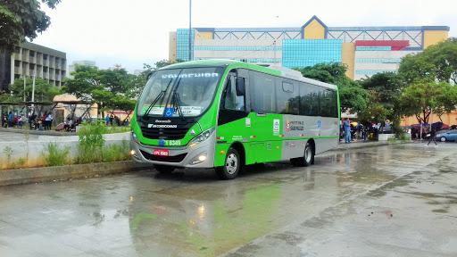 linha 938V/10 Jd. Vista Alegre – Metrô Barra Funda