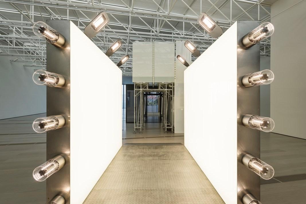 La Fundación Botín presenta a los artistas seleccionados para el Taller de Artes Plásticas que dirigirá Carsten Höller en Santander