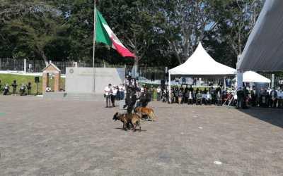 Inicia Diplomado Internacional Táctico K-9 Perros Multipropósito; Veracruz es sede