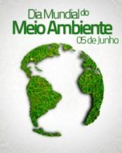 Os protestantes e o dia mundial do meio ambiente