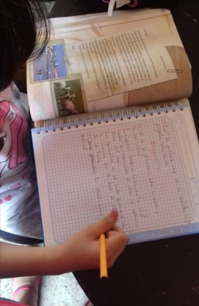 """""""No se perderá ciclo escolar"""". Regreso a clases 1 de junio: SEP 2"""