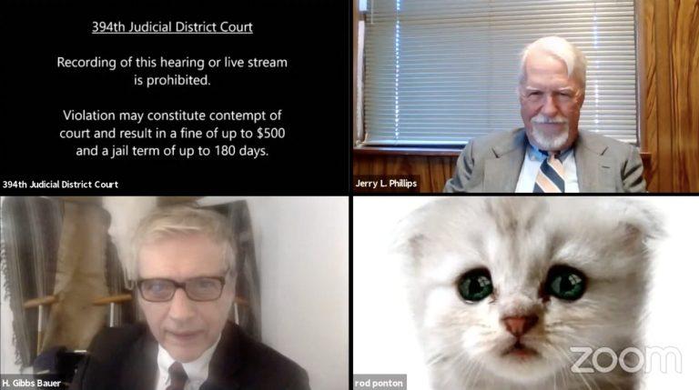 """""""No soy un gato"""", abogado se vuelve viral tras aparecer con filtro en audiencia virtual (video) 1"""