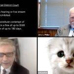 """""""No soy un gato"""", abogado se vuelve viral tras aparecer con filtro en audiencia virtual (video) 4"""