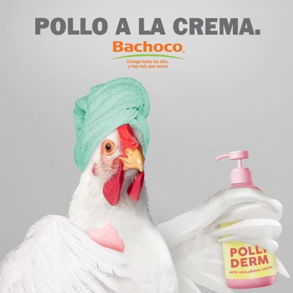 """Con """"Pollo a la poblana"""", Bachoco se vuelve tendencia en redes sociales. 8"""