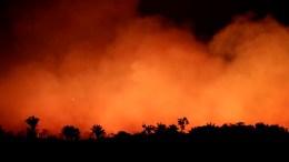 humo-incendio-amazonia-argentina