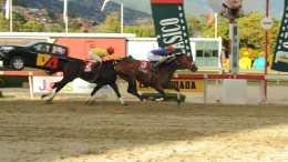 Apistos gana el Clásico Simón Bolívar en La Rinconada