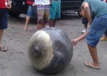 166f5522ab591865759d51028c8c0847 - Un extraño objeto metálico cayó en un pueblo de Brasil