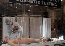 45b7807994cebbc59595eea033fd8210 - Humane Society International y cosméticos Lush lanzan impactante campaña animalista