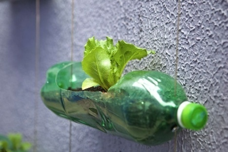 65ee000e6f764024d098aa2e08763e5b - Manual: Fabricar un Huerto Vertical en casa con botellas de plástico