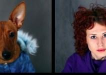 76391b0fd3c86f3c398963dd5eae6193 - Tu mascota se parece a ti, ya sea un perro o un gato