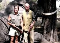 d3df5ab529cc57a70c8de1ccc5bedab4 - WWF España inicia los trámites para suprimir el cargo de presidente de honor que ocupa el rey
