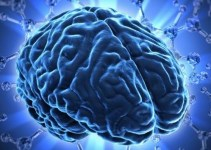 70a393fee88dc5ca0ae676a71b203daa - 10 consejos para quitarle años a tu cerebro y rejuvenecerlo