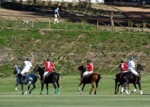 b627f45ad56b9d5135fd4be155fb778e - Cuatro millones para rehabilitar un campo de polo y abandonarlo