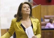 90e876a76a94573a56b8b36e679e7889 - Despedida la jefa de limpieza de la Delegación del Gobierno en Andalucía por negarse a ser la sirvienta de la Delegada