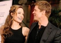 377731d40ea33c1c7cdc23e7ace5e053 - Angelina Jolie y Brad Pitt tendrán su propio vino