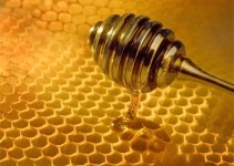 "b278cbdaf7c839ab95dcc8c220ab1eb7 - Un láser ""marciano"" para detectar la miel falsa"