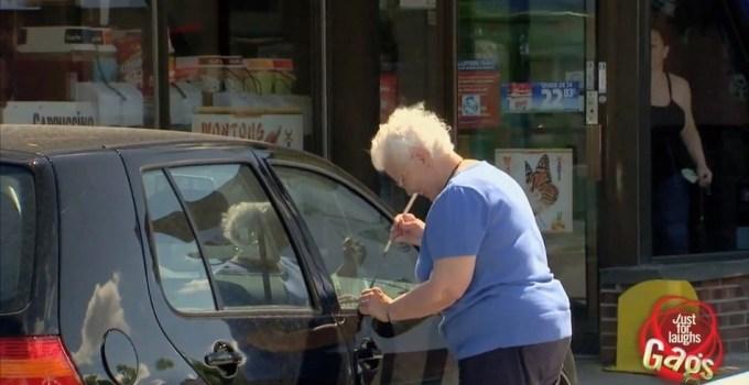 5745900227f93f823fe70e5cb5bc5576 - #Video Abuela roba un coche