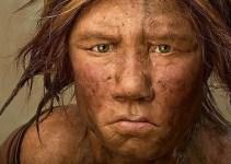 e71e92d69d56115b8627b999db376ec6 - Científicos crean y revelan el mapa genético completo de un Neandertal