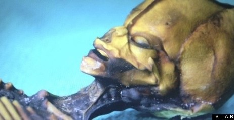 52c883f9089d37040d0cec17dfab046c - Documental revela en imágenes a alienígena descubierto en Chile (Fotos y Video)