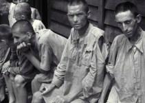 """b02b29d518c9c19d649485316679287d - Amical Mauthausen a Cospedal: comparar escraches con nazismo sólo se puede entender """"por ignorancia o por mala fe"""""""