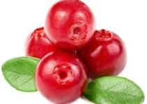 d2c86c745afdc8ffbf60c4919b013a89 - El rey de los antioxidantes