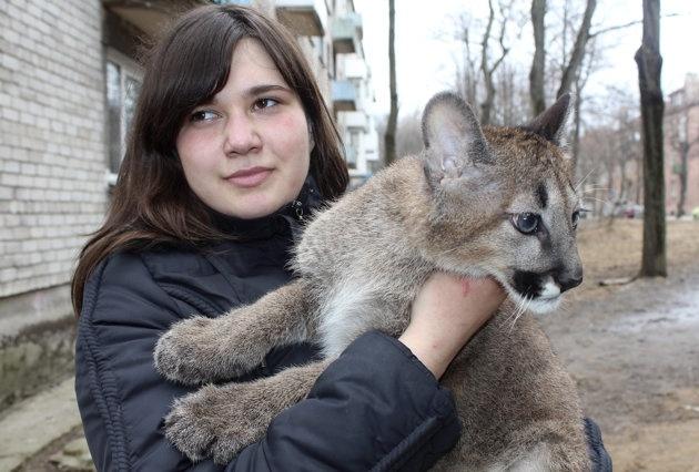 dee200a7397e19047c39101e47bbfaa7 - Chica lituana comparte apartamento con tres pumas