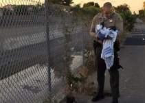 b61d1c0d95fe000c263f309c4d54cd77 - Rescatan en Los Ángeles a una recién nacida enterrada viva
