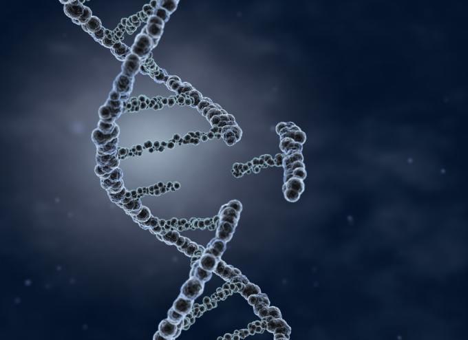Modificacion genetica de gemelas 2 - He Jiankui modifica genéticamente a gemelas con tecnología CRISPR
