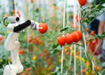 granja robotica - Granja Robotizada de IronOx-Lo Último en Cultivación