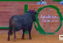 Uno de los momentos de la retransmisión de Castilla-La Mancha Media desde el Arnedo Arena