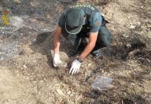 Agente de la Guardia Civil en la investigación del incendio forestal