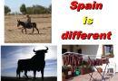 La economía española registra la mayor caída trimestral en 50 años