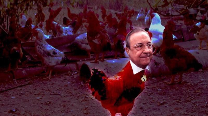 Florentino Pérez (ll), el gallo del corral hispano
