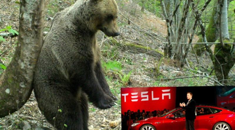 Gran apuesta bajista contra Tesla de Michael Burry