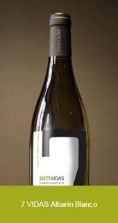 Un diario norteamericano escoge un vino DOP Cangas entre los mejores para este verano 5