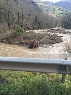 Estado del río Pigüeña
