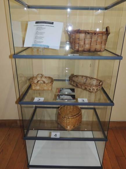 Inauguración-Semana-Cultural-Cangas-del-Narcea-2016-(9)