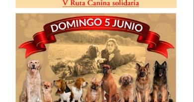 ruta canina