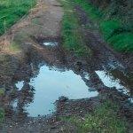 Denuncian el estado de caminos en El Tejedal, en Valdés