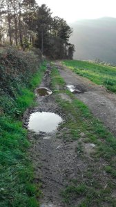 Caminos El Tejedal